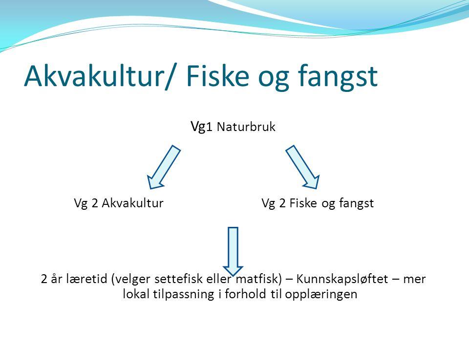Naturbruk Vi deregående kurs 1 Naturbruk Kristiansund Gjermundnes Fræna Ålesund Herøy