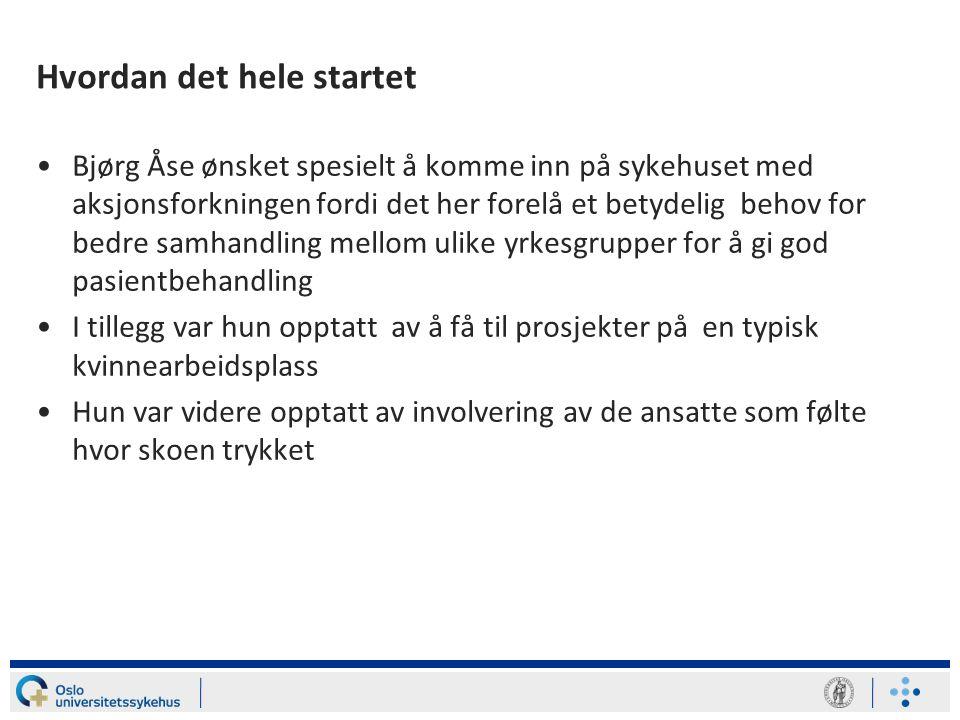 Begrensninger •Undertegnede var ikke deltager på midten av 80-tallet da Bjørg Åse kom inn ved Ullevål •Kom først inn som prosjektleder i Senter for bedre arbeidslivs (SBA) satsing i sykehussektoren primo 90-tallet