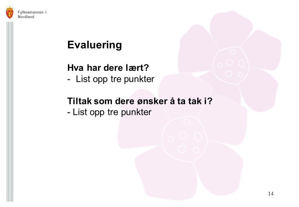 Fylkesmannen i Nordland 14 Evaluering Hva har dere lært? -List opp tre punkter Tiltak som dere ønsker å ta tak i? - List opp tre punkter