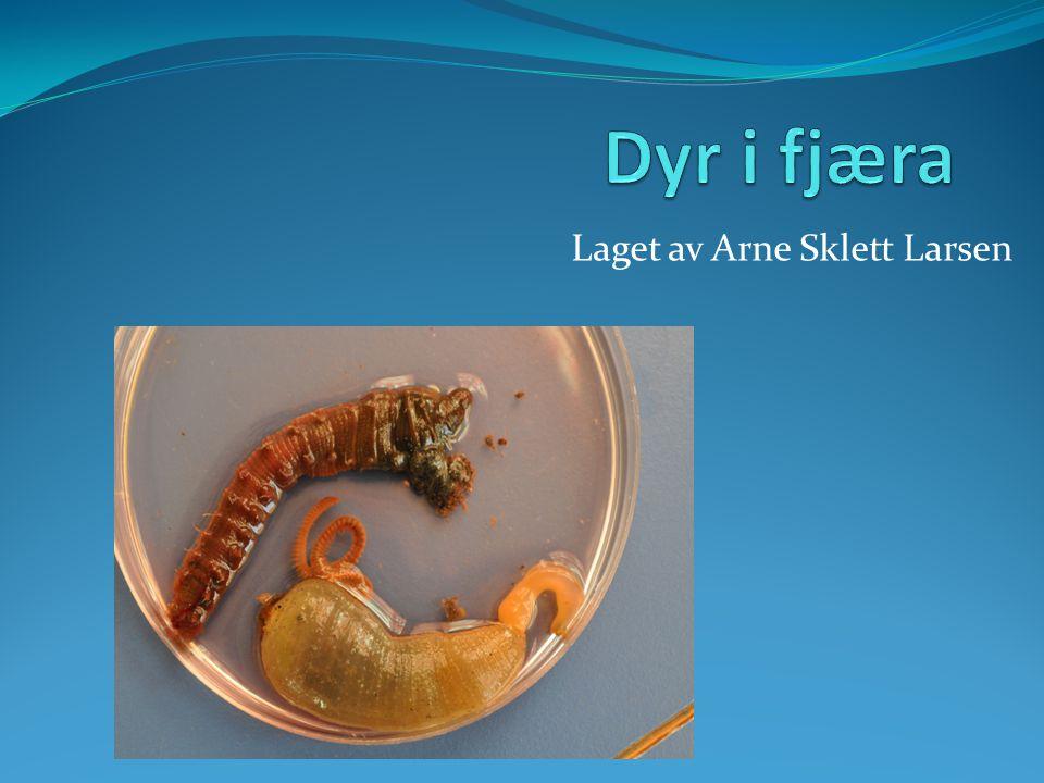 Laget av Arne Sklett Larsen