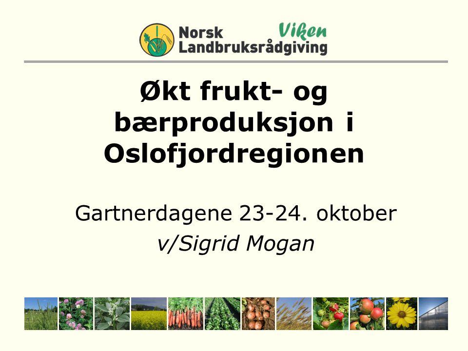 Økt frukt- og bærproduksjon i Oslofjordregionen Gartnerdagene 23-24. oktober v/Sigrid Mogan