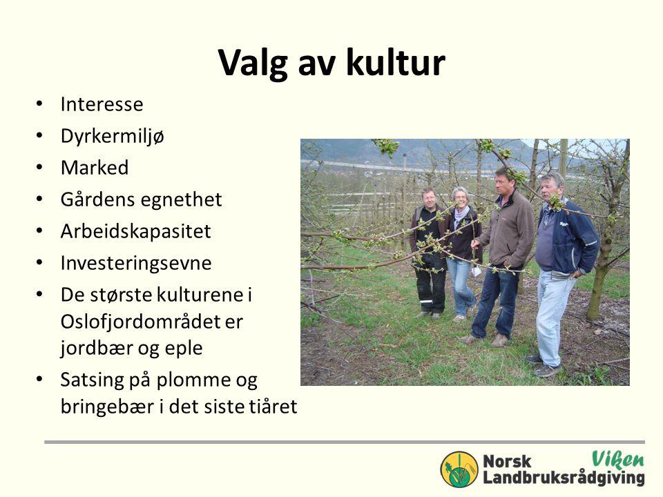 Valg av kultur • Interesse • Dyrkermiljø • Marked • Gårdens egnethet • Arbeidskapasitet • Investeringsevne • De største kulturene i Oslofjordområdet e