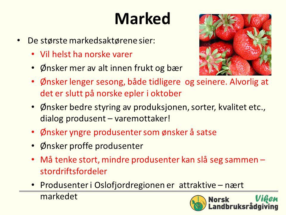 Marked • De største markedsaktørene sier: • Vil helst ha norske varer • Ønsker mer av alt innen frukt og bær • Ønsker lenger sesong, både tidligere og seinere.