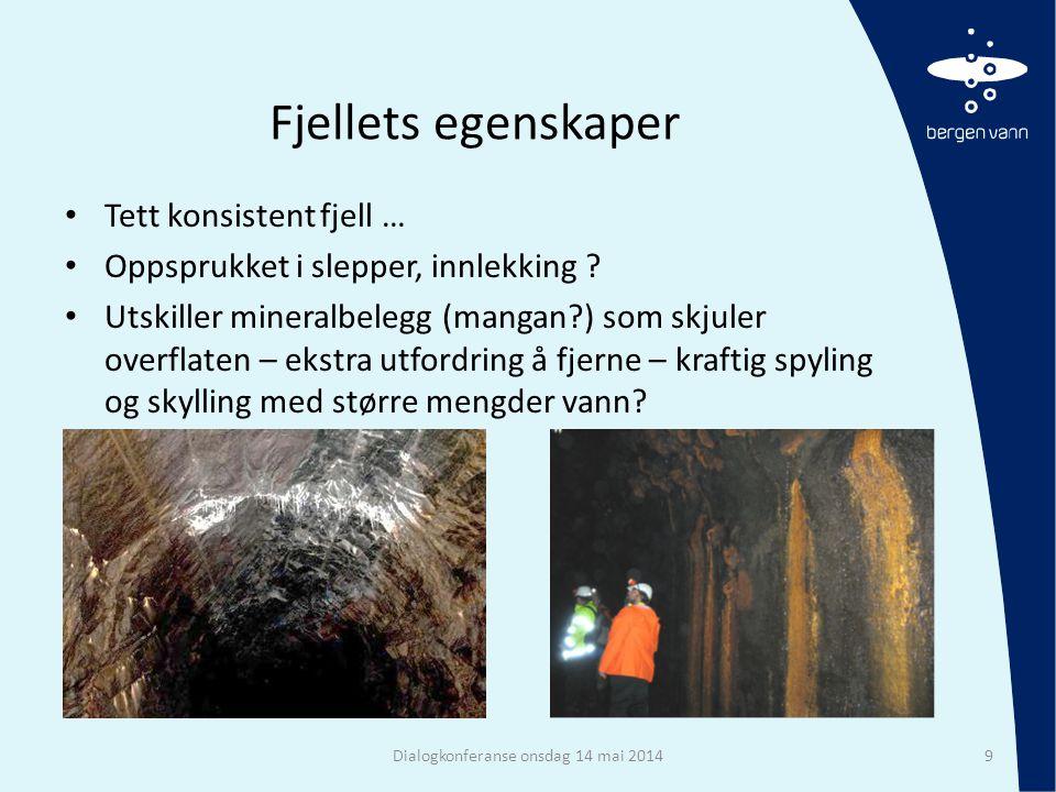 Fjellets egenskaper • Tett konsistent fjell … • Oppsprukket i slepper, innlekking ? • Utskiller mineralbelegg (mangan?) som skjuler overflaten – ekstr