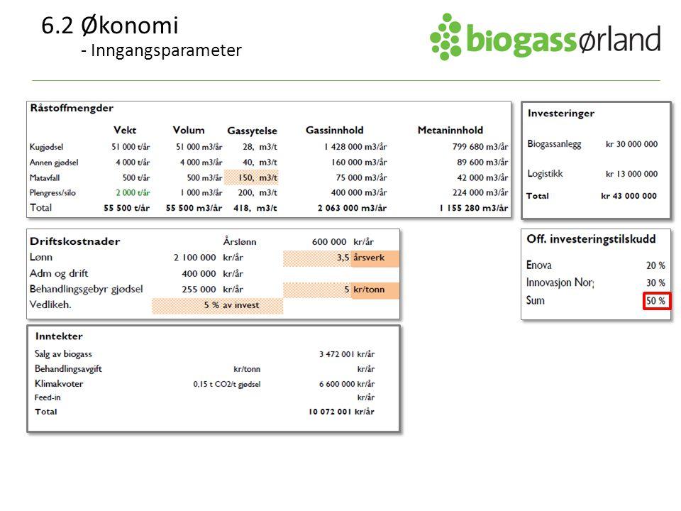 6.2Økonomi - Inngangsparameter