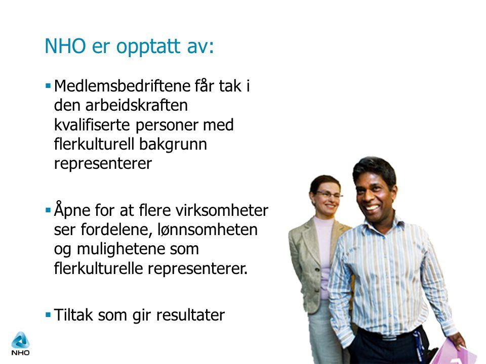 NHO er opptatt av:  Medlemsbedriftene får tak i den arbeidskraften kvalifiserte personer med flerkulturell bakgrunn representerer  Åpne for at flere