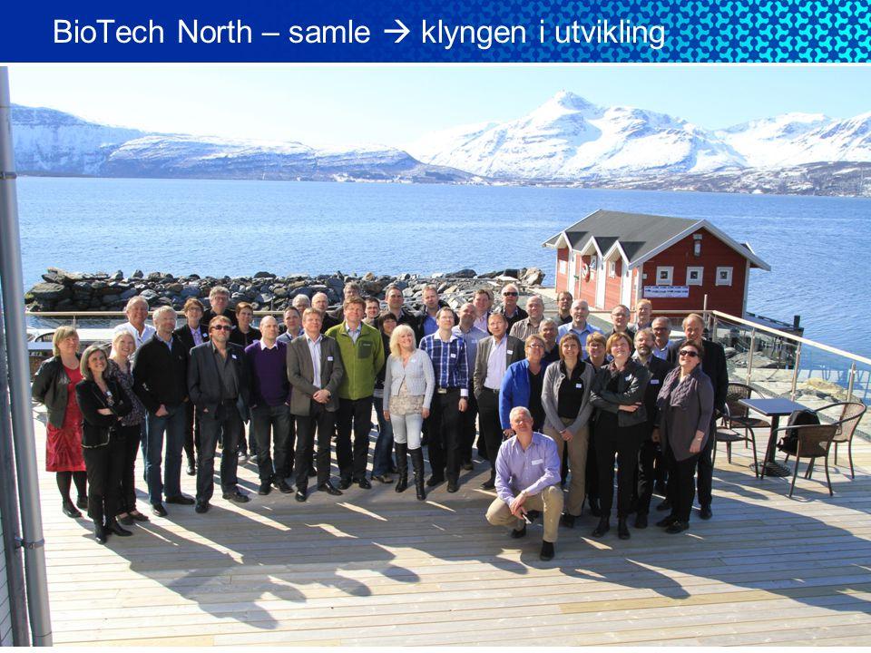 BioTech North – samle  klyngen i utvikling