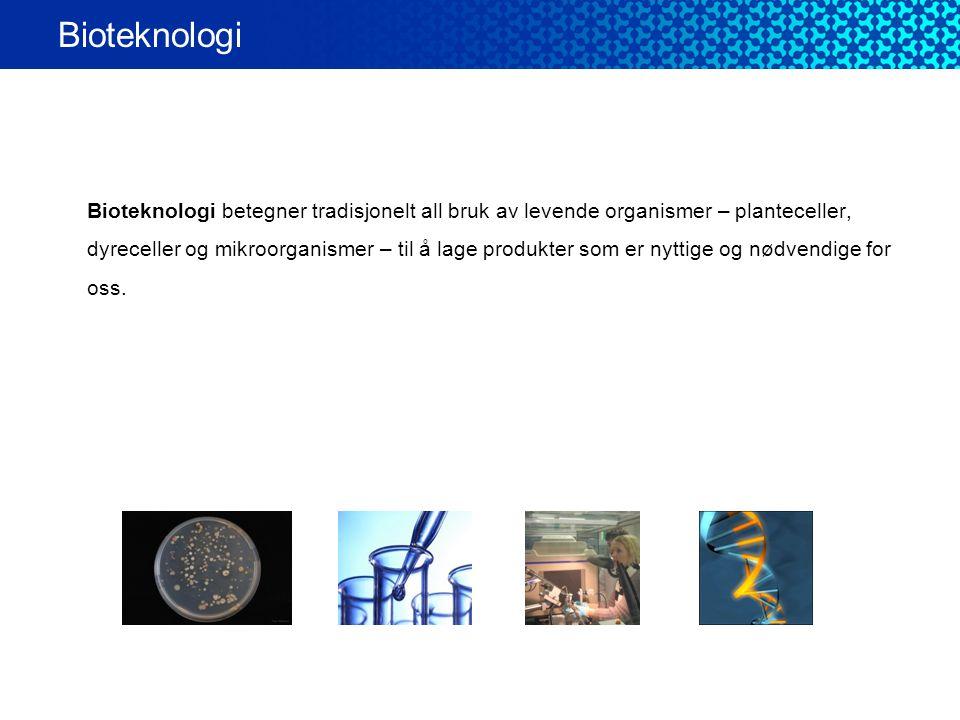 Bioteknologi Bioteknologi betegner tradisjonelt all bruk av levende organismer – planteceller, dyreceller og mikroorganismer – til å lage produkter so