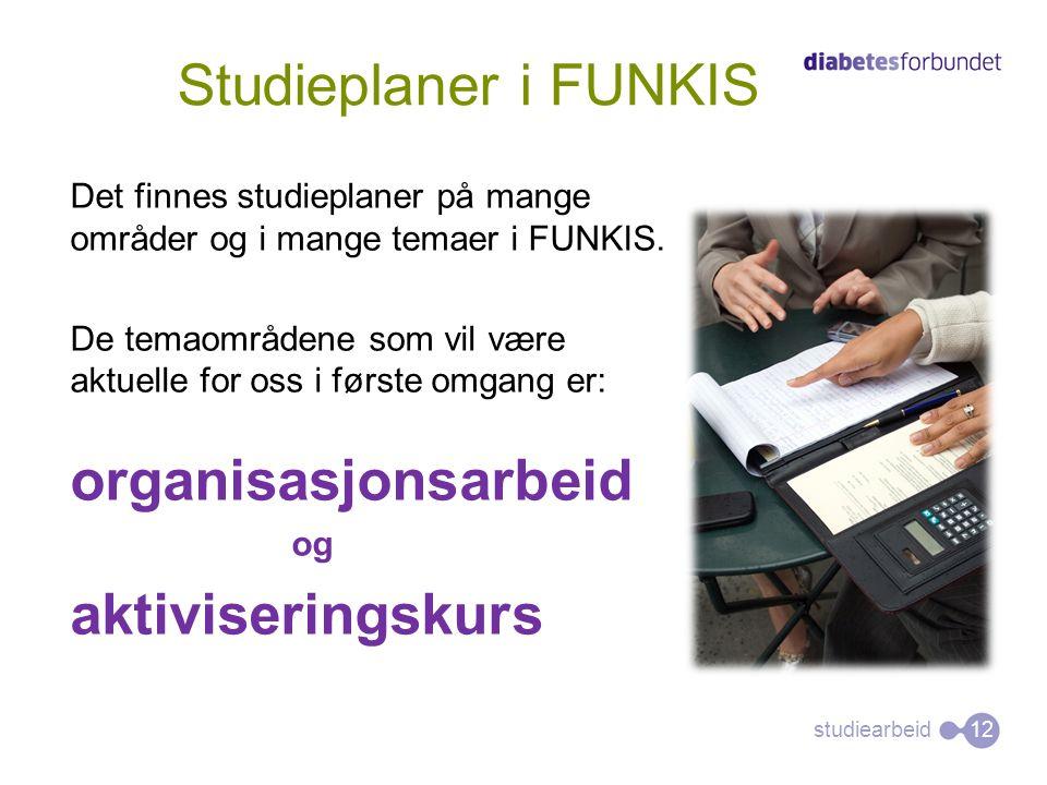 studiearbeid Det finnes studieplaner på mange områder og i mange temaer i FUNKIS. De temaområdene som vil være aktuelle for oss i første omgang er: or