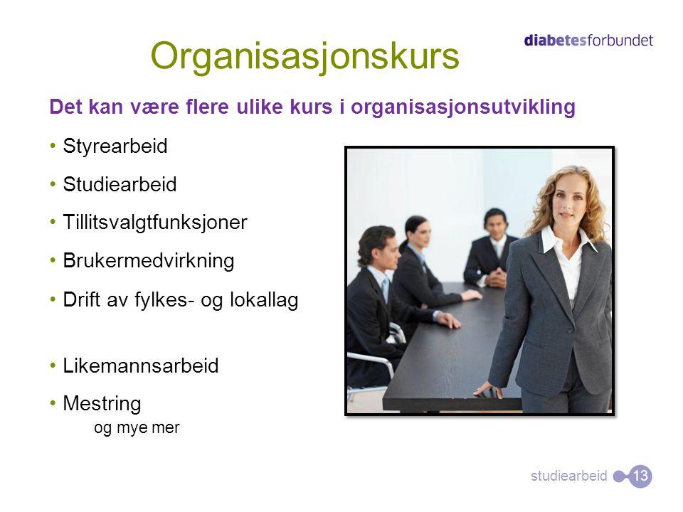 studiearbeid Det kan være flere ulike kurs i organisasjonsutvikling •Styrearbeid •Studiearbeid •Tillitsvalgtfunksjoner •Brukermedvirkning •Drift av fy
