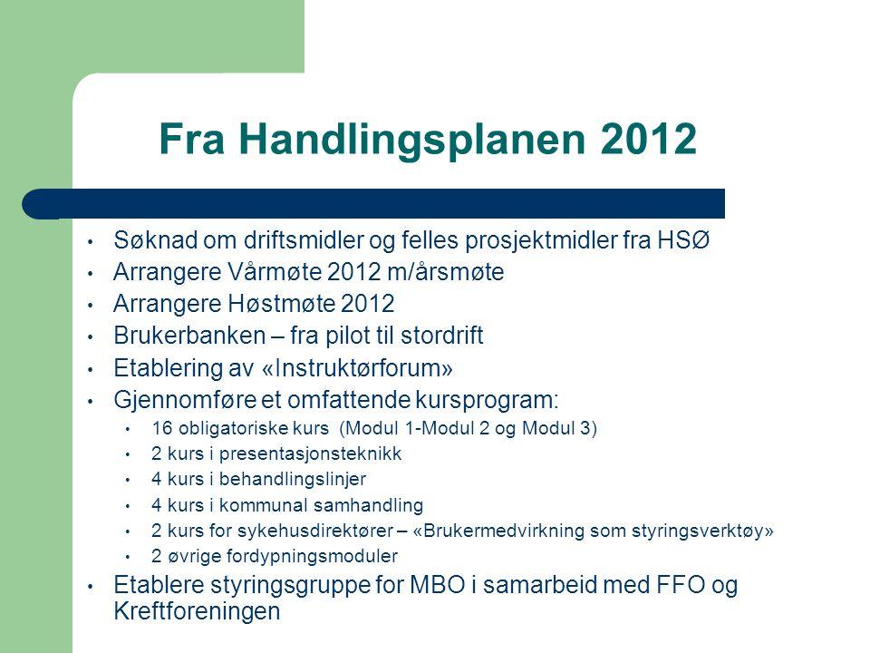 Fra Handlingsplanen 2012 • Søknad om driftsmidler og felles prosjektmidler fra HSØ • Arrangere Vårmøte 2012 m/årsmøte • Arrangere Høstmøte 2012 • Bruk