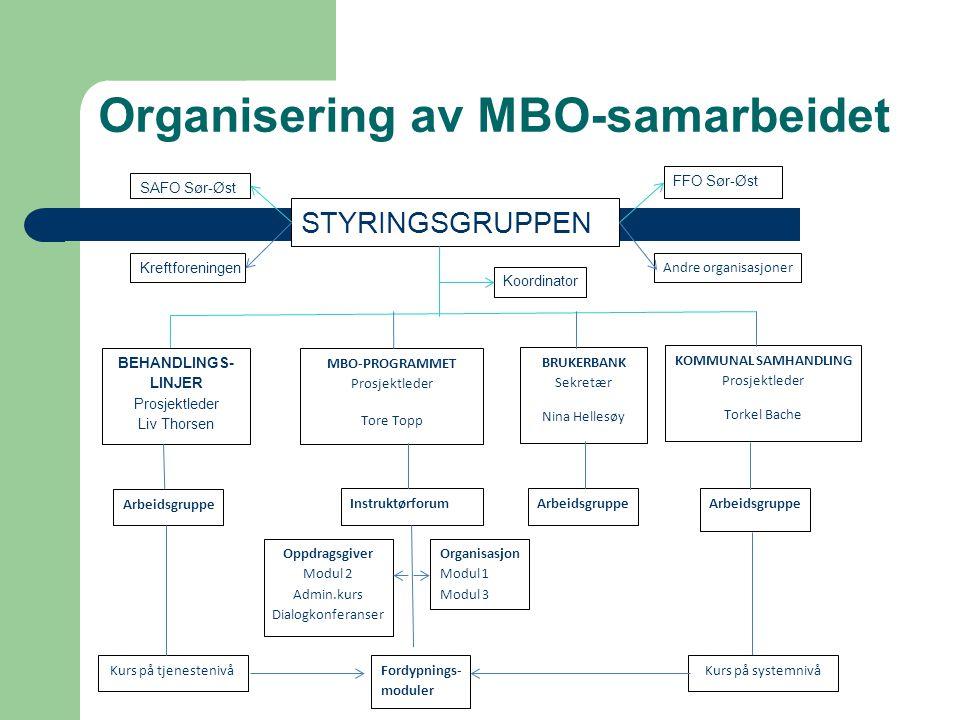 Organisering av MBO-samarbeidet STYRINGSGRUPPEN FFO Sør-Øst SAFO Sør-Øst Kreftforeningen Andre organisasjoner Koordinator BEHANDLINGS- LINJER Prosjekt