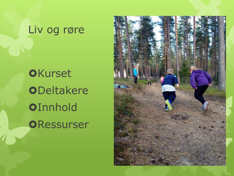 Trening  Ledes av fysioterapeut  Lekbetont aktivitet i sal  Trening ute- ski, aking, sykkeltur, lek i skogen  Annenhver gang sammen med foreldre