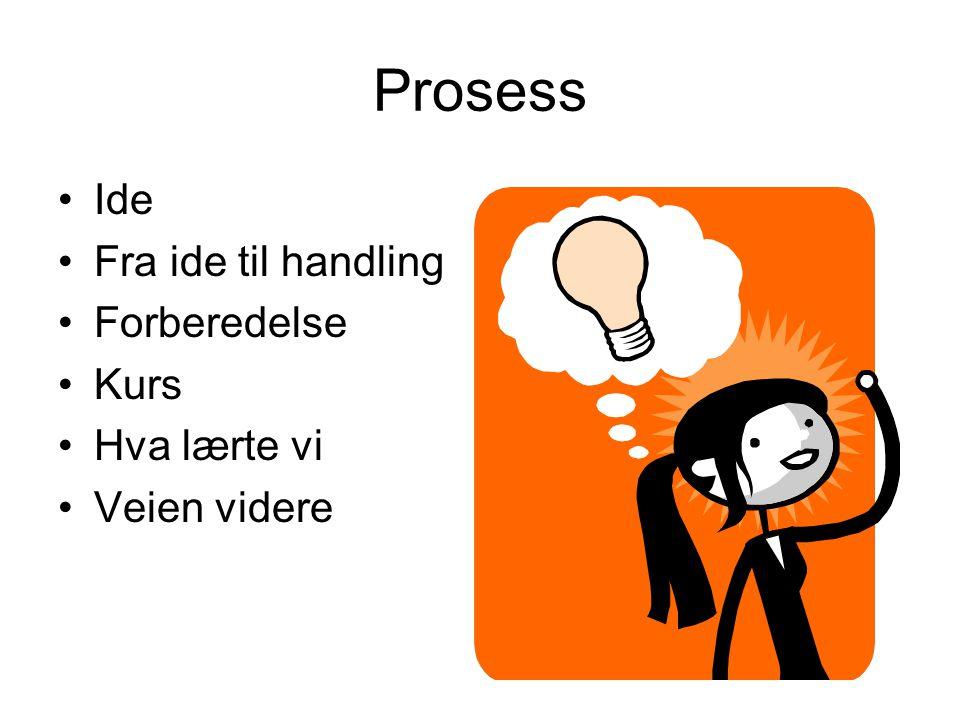 Prosess •Ide •Fra ide til handling •Forberedelse •Kurs •Hva lærte vi •Veien videre