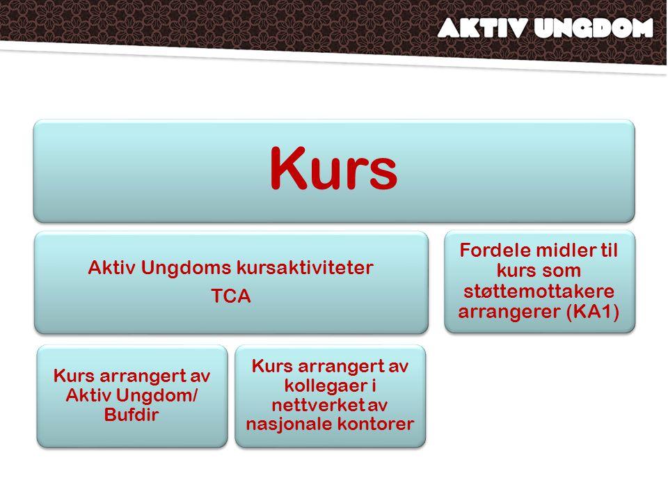 Kurs Aktiv Ungdoms kursaktiviteter TCA Kurs arrangert av Aktiv Ungdom/ Bufdir Kurs arrangert av kollegaer i nettverket av nasjonale kontorer Fordele m