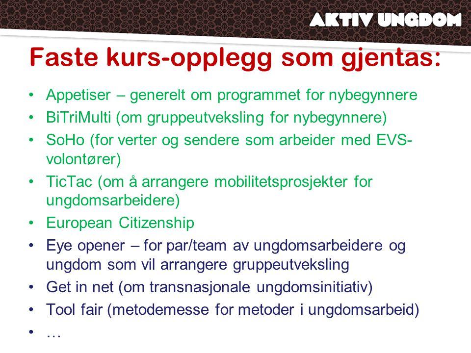 Faste kurs-opplegg som gjentas: •Appetiser – generelt om programmet for nybegynnere •BiTriMulti (om gruppeutveksling for nybegynnere) •SoHo (for verter og sendere som arbeider med EVS- volontører) •TicTac (om å arrangere mobilitetsprosjekter for ungdomsarbeidere) •European Citizenship •Eye opener – for par/team av ungdomsarbeidere og ungdom som vil arrangere gruppeutveksling •Get in net (om transnasjonale ungdomsinitiativ) •Tool fair (metodemesse for metoder i ungdomsarbeid) •…