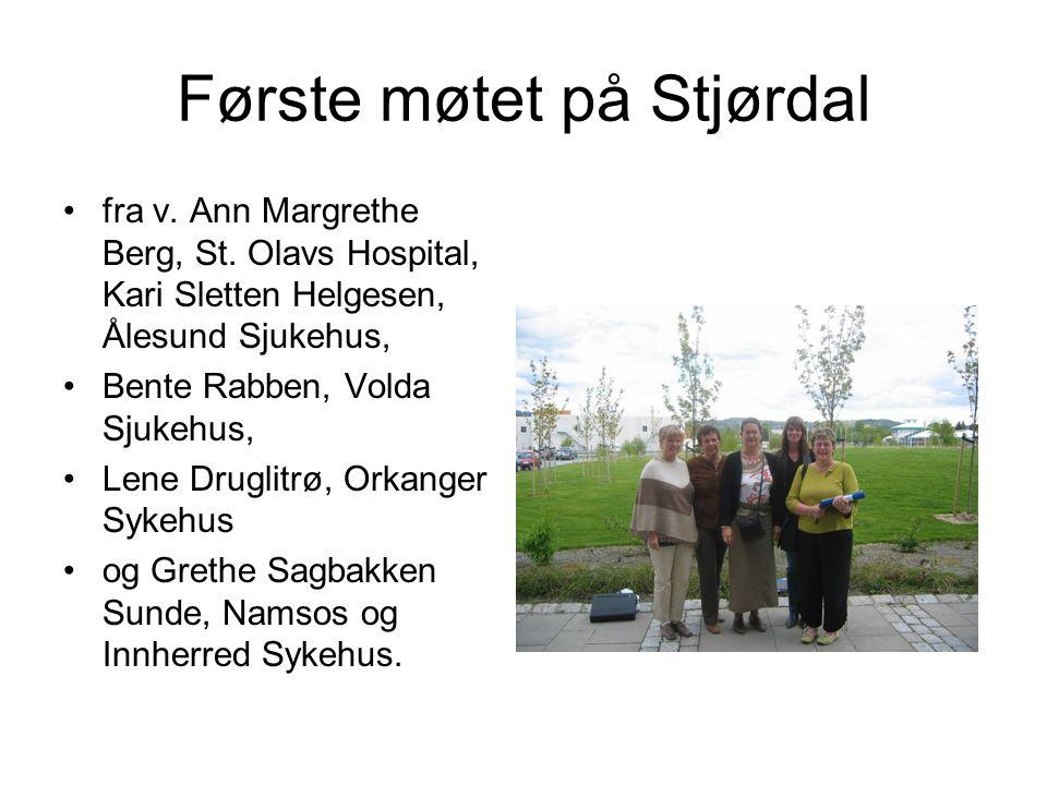 Første møtet på Stjørdal •fra v. Ann Margrethe Berg, St. Olavs Hospital, Kari Sletten Helgesen, Ålesund Sjukehus, •Bente Rabben, Volda Sjukehus, •Lene