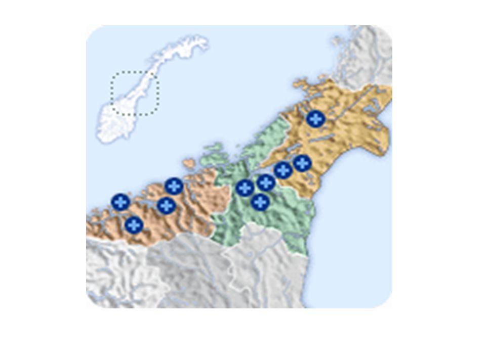 Fokusområder –faglig samarbeid –felles retningslinjer –knytte oss mot sykehushygieniker og hygienegruppen i Helse Midt Norge –faggruppe for ledere og ansvarlige i sterilsentraler og instrumentenheter –fokus på steril forsyning som vidt begrep i sykehussammenheng –utveksle erfaringer –hospitering, faglig utvikling og utveksling, bygge relasjoner for medarbeidere.