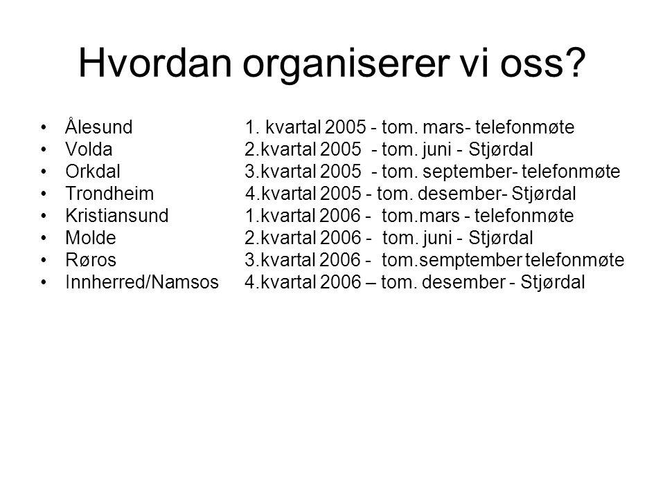 Hvordan organiserer vi oss? •Ålesund 1. kvartal 2005 - tom. mars- telefonmøte •Volda 2.kvartal 2005 - tom. juni - Stjørdal •Orkdal 3.kvartal 2005 - to