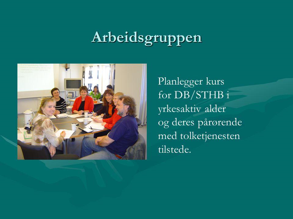 Arbeidsgruppen Planlegger kurs for DB/STHB i yrkesaktiv alder og deres pårørende med tolketjenesten tilstede.