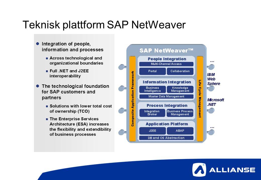 Teknisk plattform SAP NetWeaver