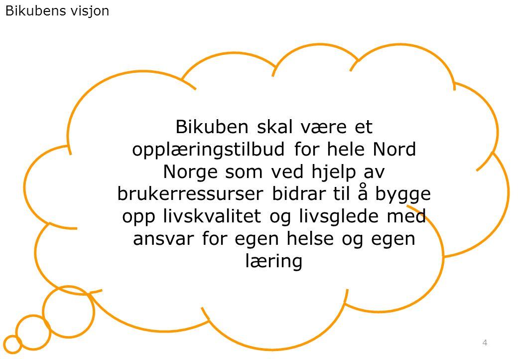 Bikubens visjon 4 Bikuben skal være et opplæringstilbud for hele Nord Norge som ved hjelp av brukerressurser bidrar til å bygge opp livskvalitet og livsglede med ansvar for egen helse og egen læring