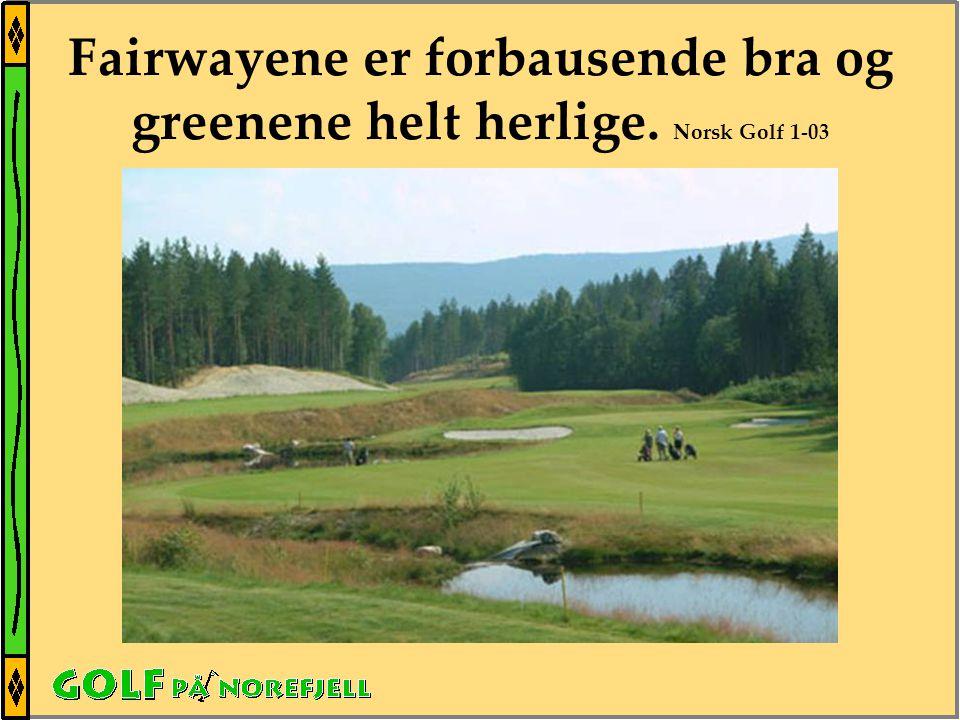 Fairwayene er forbausende bra og greenene helt herlige. Norsk Golf 1-03