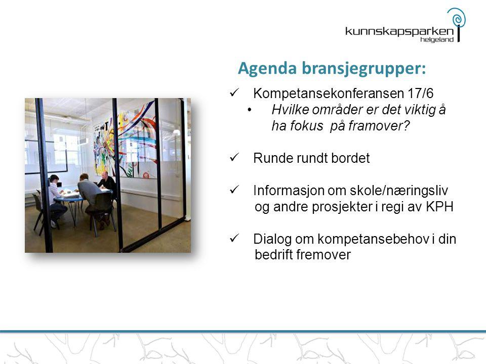Agenda bransjegrupper:  Kompetansekonferansen 17/6 •Hvilke områder er det viktig å ha fokus på framover?  Runde rundt bordet  Informasjon om skole/