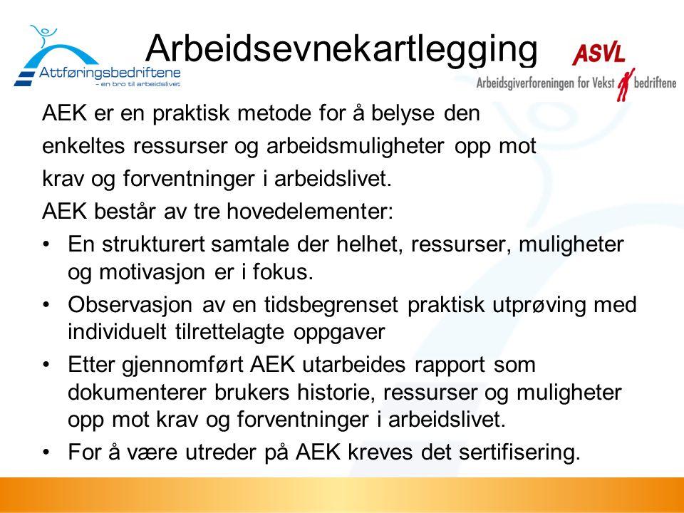Arbeidsevnekartlegging AEK er en praktisk metode for å belyse den enkeltes ressurser og arbeidsmuligheter opp mot krav og forventninger i arbeidslivet