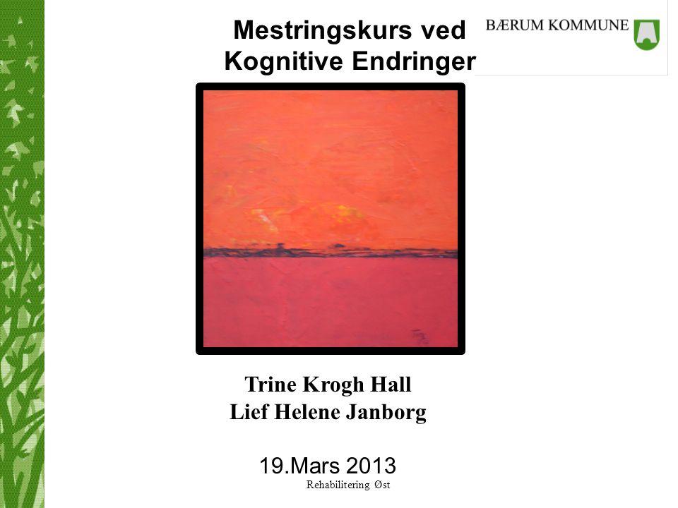 Rehabilitering Øst Mestringskurs ved Kognitive Endringer Trine Krogh Hall Lief Helene Janborg 19.Mars 2013
