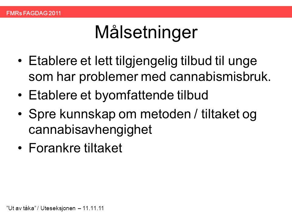 Målsetninger •Etablere et lett tilgjengelig tilbud til unge som har problemer med cannabismisbruk. •Etablere et byomfattende tilbud •Spre kunnskap om
