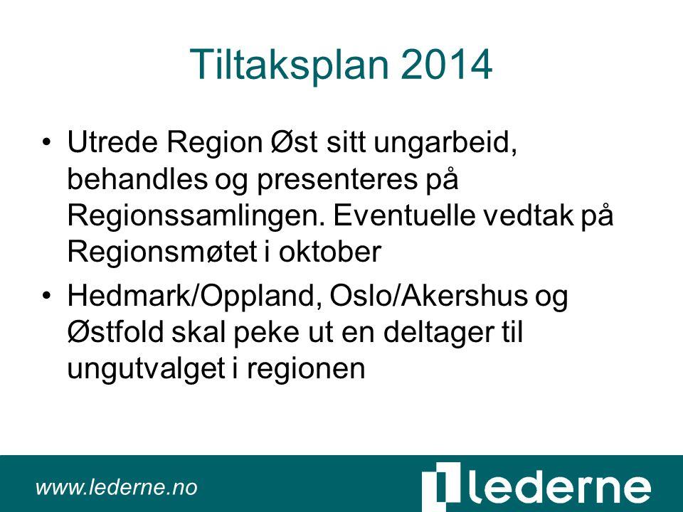 www.lederne.no Tiltaksplan 2014 •Utrede Region Øst sitt ungarbeid, behandles og presenteres på Regionssamlingen.