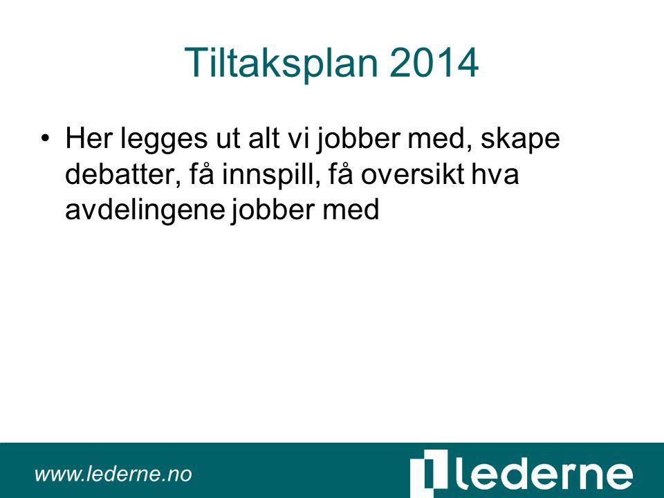 www.lederne.no Tiltaksplan 2014 •Her legges ut alt vi jobber med, skape debatter, få innspill, få oversikt hva avdelingene jobber med