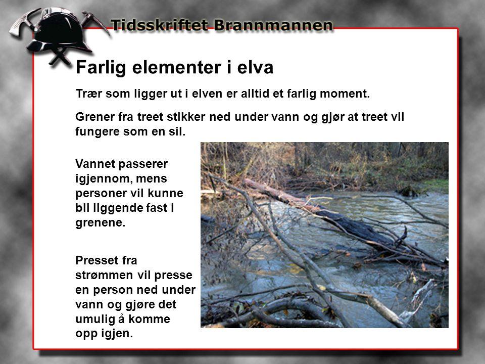 Farlig elementer i elva Trær som ligger ut i elven er alltid et farlig moment. Grener fra treet stikker ned under vann og gjør at treet vil fungere so