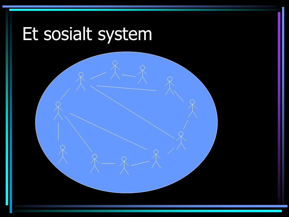 Et sosialt system
