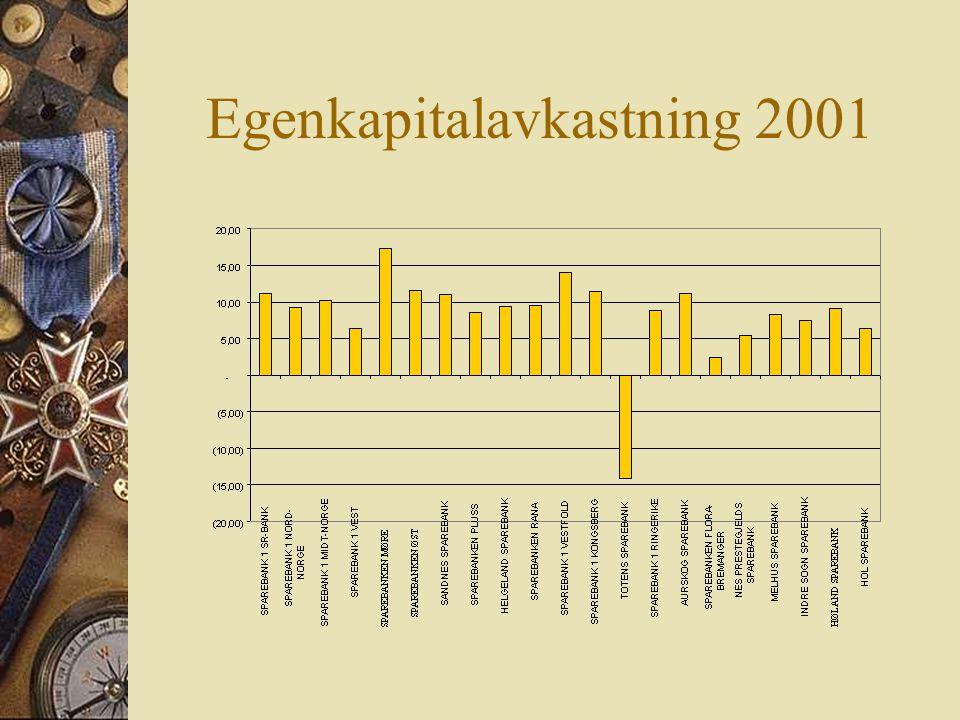 Egenkapitalavkastning 2001