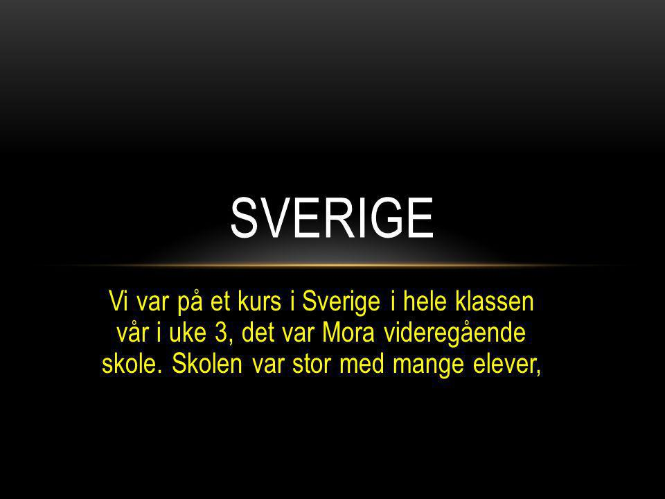 Vi var på et kurs i Sverige i hele klassen vår i uke 3, det var Mora videregående skole. Skolen var stor med mange elever, SVERIGE