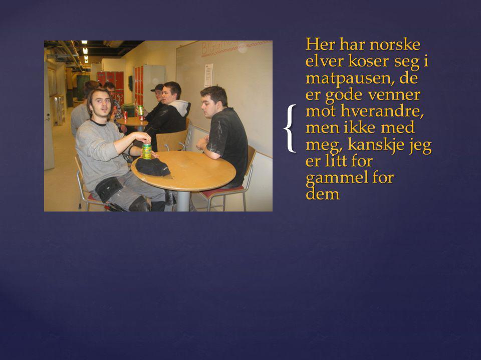 { Her har norske elver koser seg i matpausen, de er gode venner mot hverandre, men ikke med meg, kanskje jeg er litt for gammel for dem