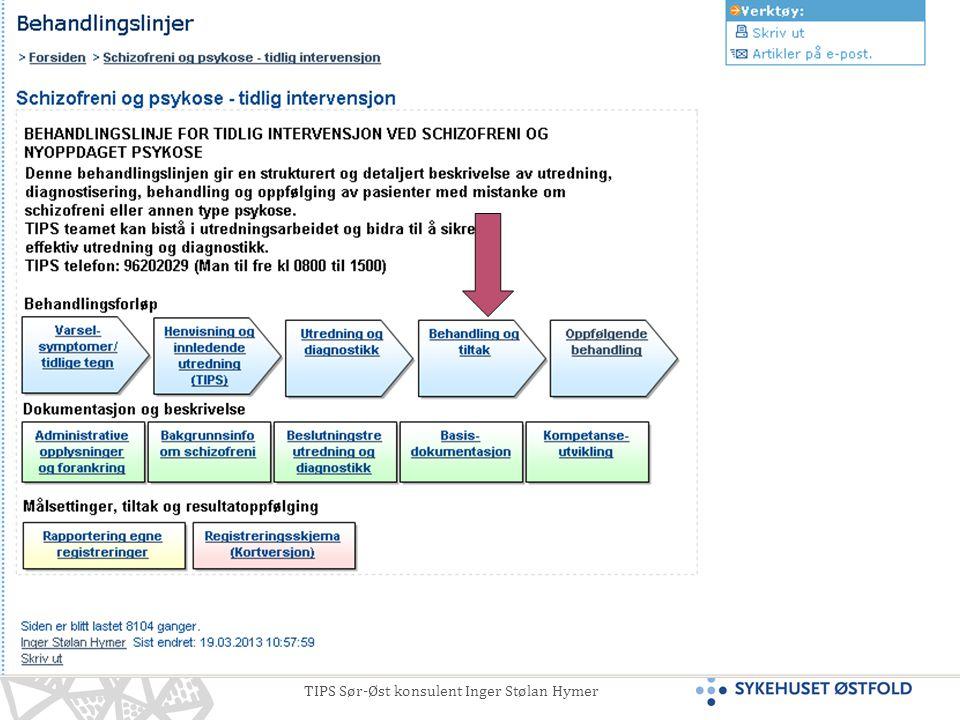 TIPS Sør-Øst konsulent Inger Stølan Hymer