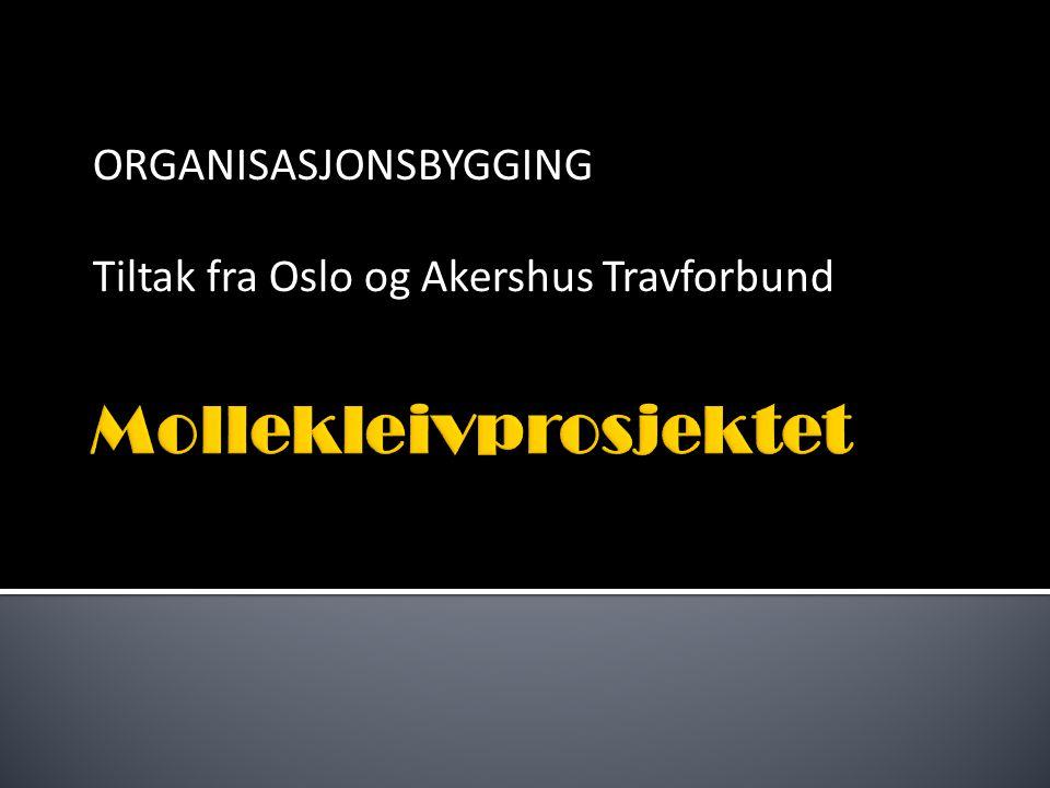 ORGANISASJONSBYGGING Tiltak fra Oslo og Akershus Travforbund