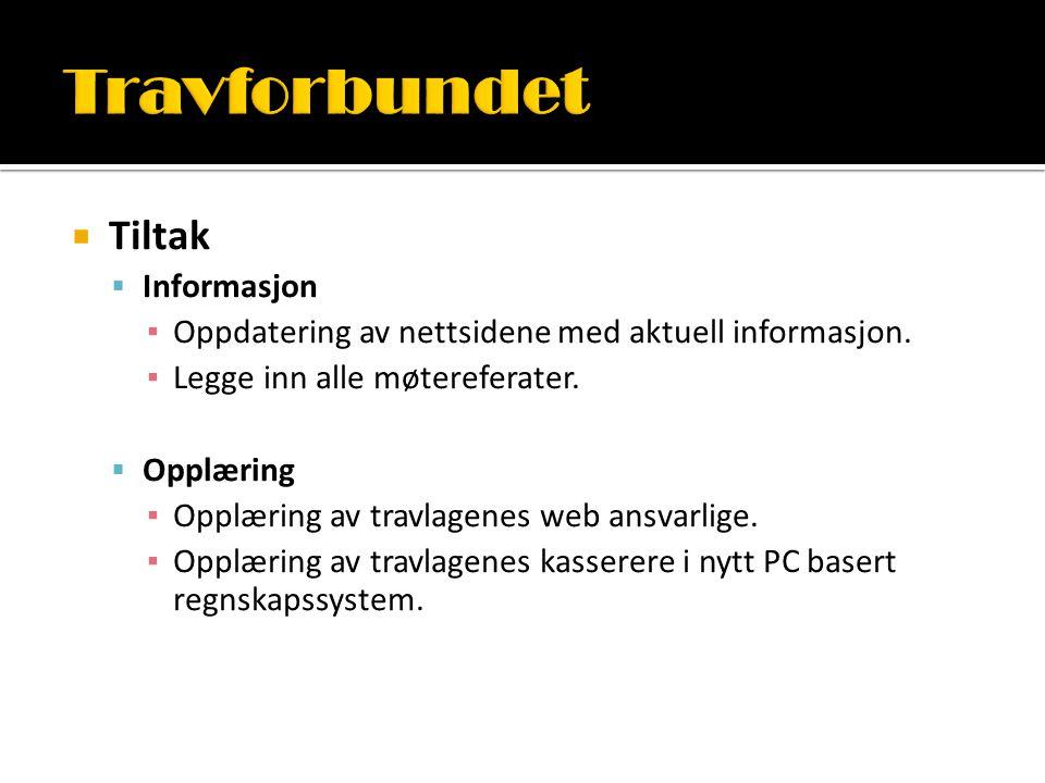  Tiltak  Informasjon ▪ Oppdatering av nettsidene med aktuell informasjon. ▪ Legge inn alle møtereferater.  Opplæring ▪ Opplæring av travlagenes web