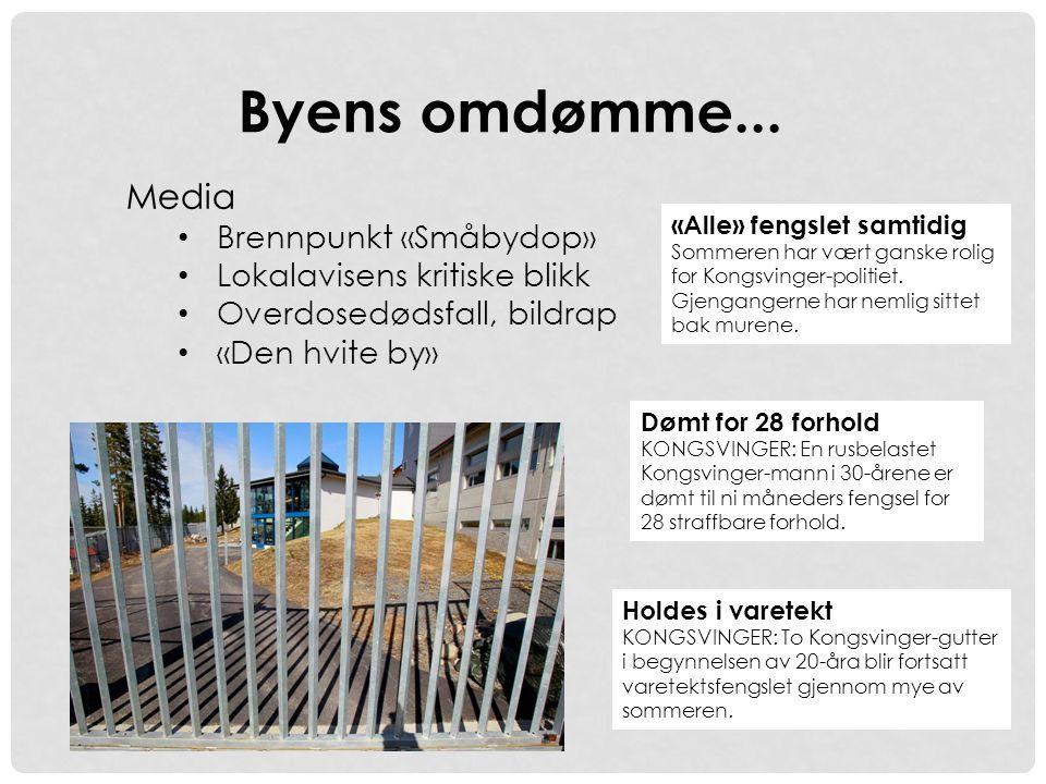 Dømt for 28 forhold KONGSVINGER: En rusbelastet Kongsvinger-mann i 30-årene er dømt til ni måneders fengsel for 28 straffbare forhold. Byens omdømme..