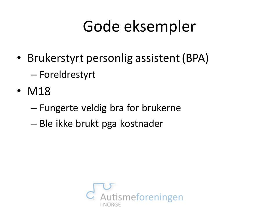 Gode eksempler • Brukerstyrt personlig assistent (BPA) – Foreldrestyrt • M18 – Fungerte veldig bra for brukerne – Ble ikke brukt pga kostnader