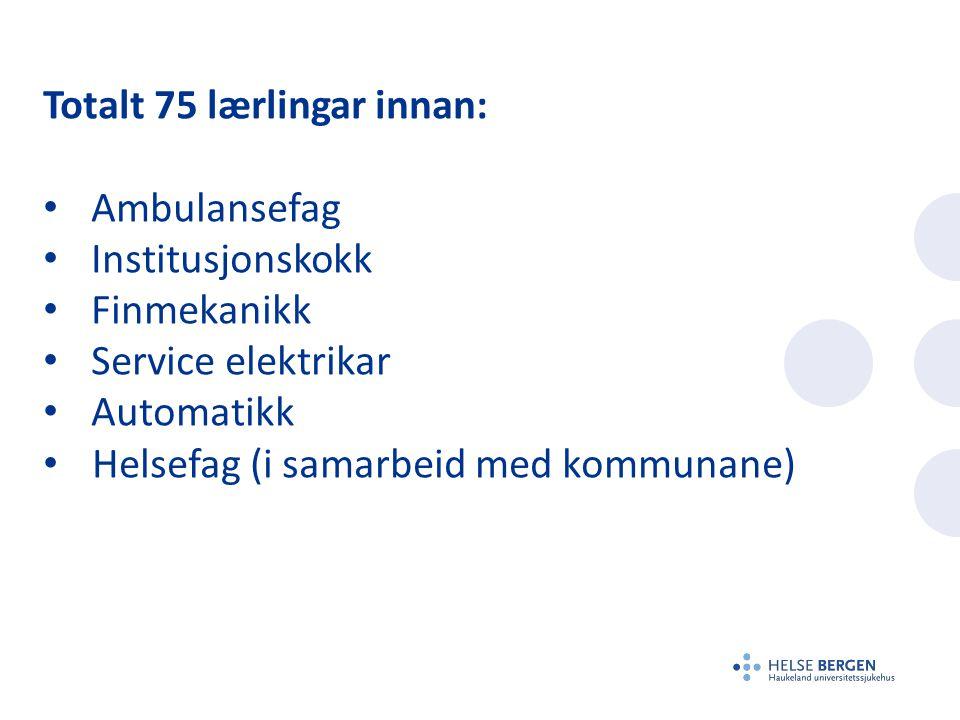 Totalt 75 lærlingar innan: • Ambulansefag • Institusjonskokk • Finmekanikk • Service elektrikar • Automatikk • Helsefag (i samarbeid med kommunane)