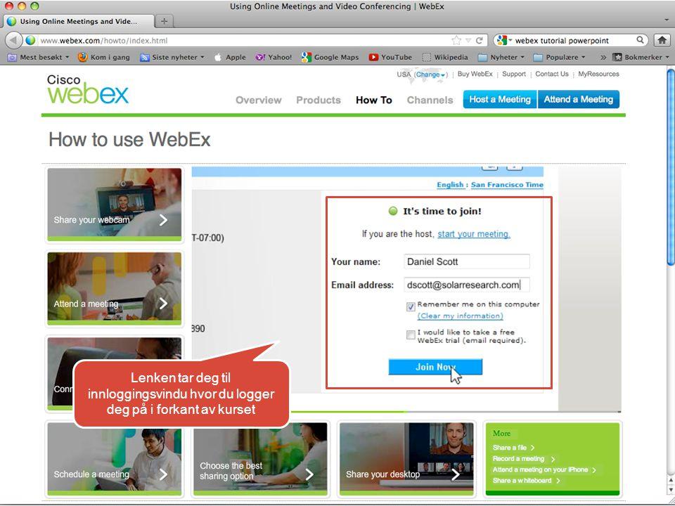 Et vindu kommer tilsyne med ID og passord som brukerstøttevakten skal benytte for å se fjernvisning av din skjerm