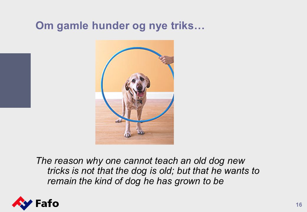 Om gamle hunder og nye triks… The reason why one cannot teach an old dog new tricks is not that the dog is old; but that he wants to remain the kind of dog he has grown to be 16