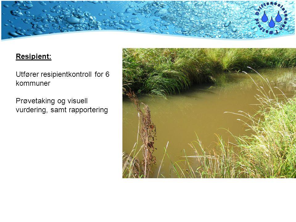 Resipient: Utfører resipientkontroll for 6 kommuner Prøvetaking og visuell vurdering, samt rapportering