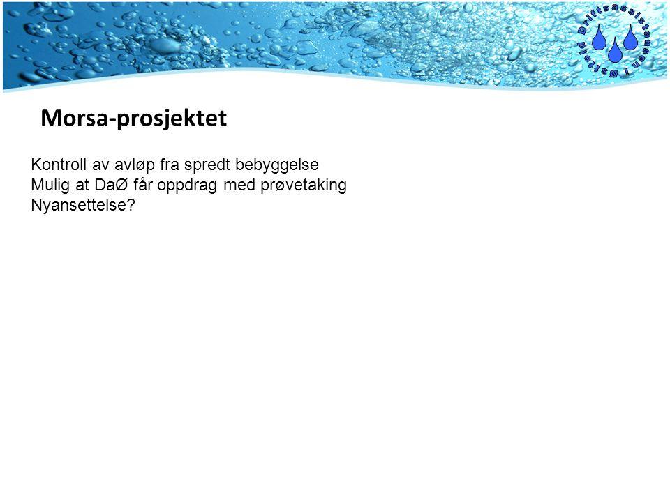 Morsa-prosjektet Kontroll av avløp fra spredt bebyggelse Mulig at DaØ får oppdrag med prøvetaking Nyansettelse?