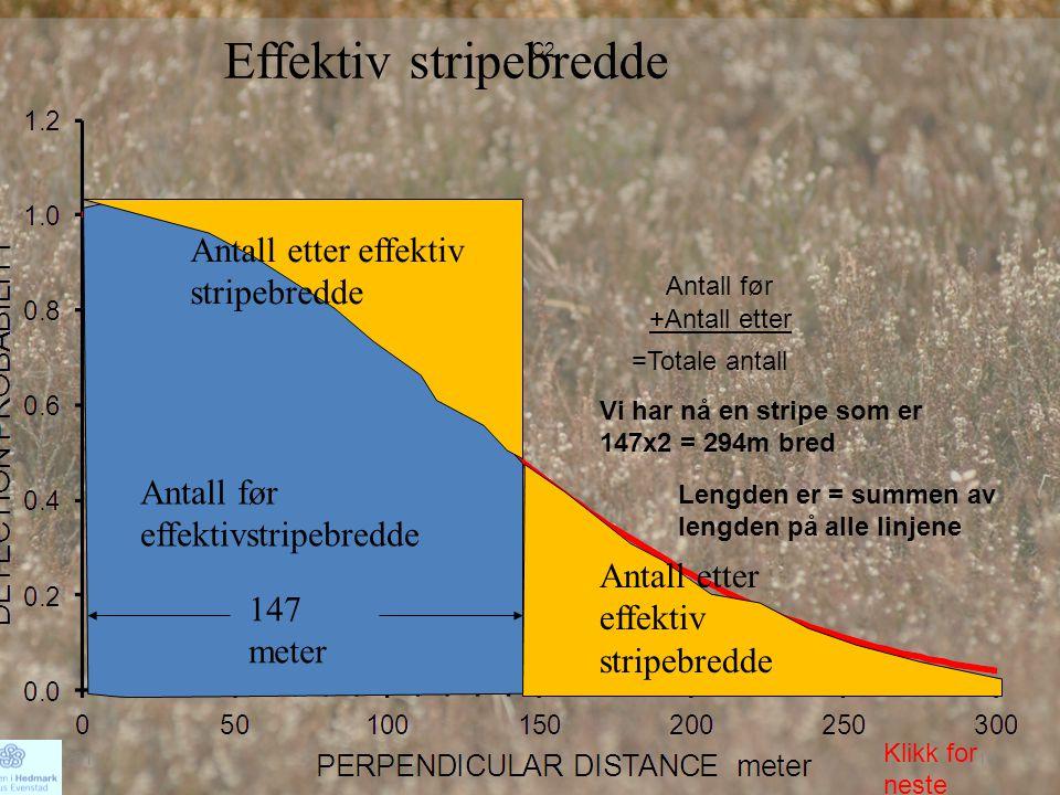 Effektiv stripebredde Antall før effektivstripebredde Antall etter effektiv stripebredde Antall før +Antall etter =Totale antall Vi har nå en stripe s
