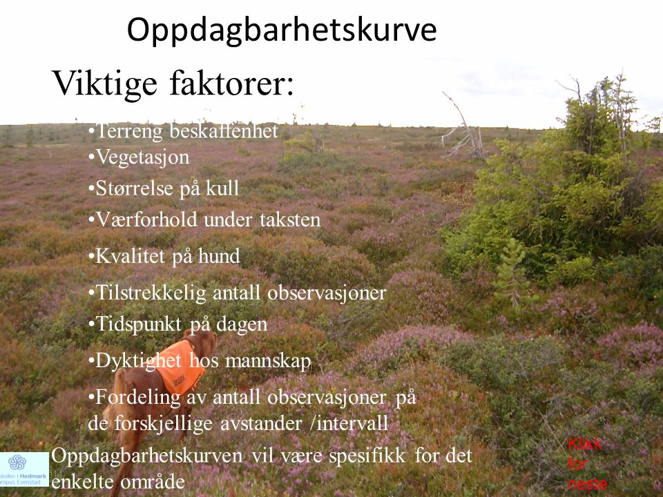 Oppdagbarhetskurve Viktige faktorer: •Terreng beskaffenhet •Vegetasjon •Værforhold under taksten •Dyktighet hos mannskap •Kvalitet på hund Oppdagbarhe